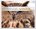 Enlace a la web reservatuvisita.es